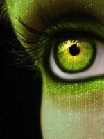Binary coding by MEGAN-Yrrbby