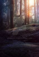 PREMIUM Background 5 - The Forest by Gilgamesh-Art
