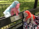 Jim Henson bench, Central Park NYC by KarRedRoses