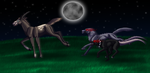 Request- Night Hunting by Narncolie