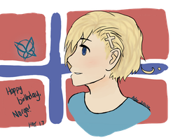 Hetalia - May 17 by PlainlyAwesome