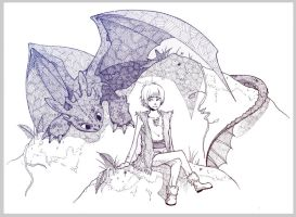 How to Train Your Dragon by Seltivo
