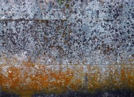 texture12 by awjay
