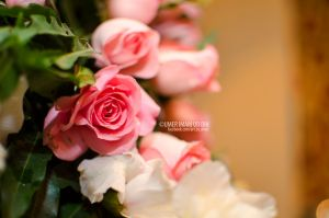 The Wedding Roses by umerr2000