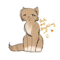Ask Leafpool c: by Ask--Leafpool