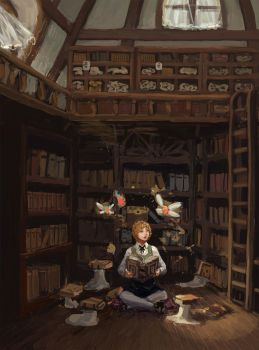 Library by lee989y