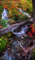 Fall Falls by Sarah--Lynne
