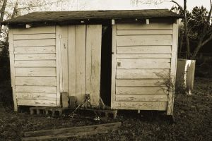 Old Shed by firegal01