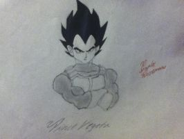 Prince Vegeta by Draw4fun2