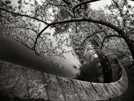 DC Water curve by homesickellian