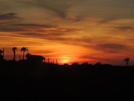 Sunset Silhouette by Bethany1994