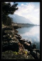 Montreux by anticide