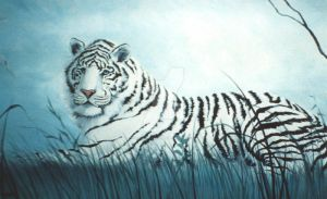 White tiger by SMorrisonArt