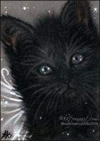 Black Fairy Kitty ACEO by Katerina-Art