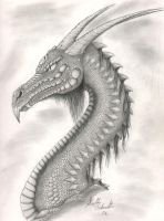 Portrait of a Dragon by FalconStorm