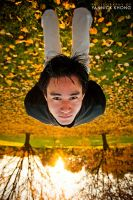Turn your world upside down by confucius-zero