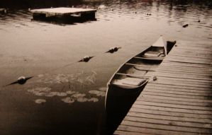 Music of the Lake by birchlane