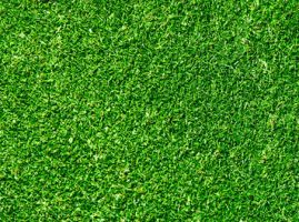 Seamless Green Grass Texture by backgroundsfind