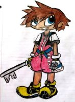 Sora by OodlezOfNoodlez
