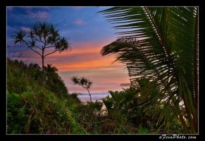 Tropical Sunrise by aFeinPhoto-com