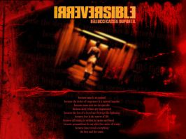 Irreversible by firefoxcentral
