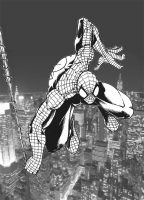 Spidey swings into action by DW-DeathWisH