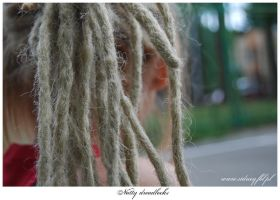 Natty dreadlocks by sidney22