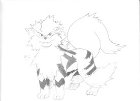 Arcanine by Mikey-Spillers