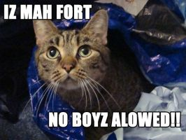 Bag Forts are Fun. by Sa-weet-J