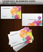 COMPANY BUSINESS CARD by dimplegal