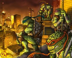 Teenage Mutant Ninja Turtles by effix35