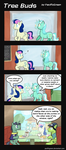 Tree Buds: 11: Window by PacificGreen