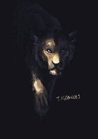 Unfinished Tigon by tigon