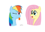 Rainbow Dash and Fluttershy by WaltherP38ita