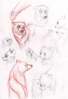 Brother Bear sketch practice 1 by LyricaBelachium