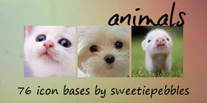 Animal Icon Bases by sweetiepebbles