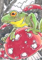 the frog on the toad by theMoondrop