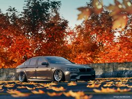 BMW M5 F01 Stanced by sergoc58
