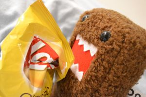 No Domo Noooo!!! by PeachyTwist