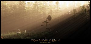 From shadow to light 2 by PeterN64