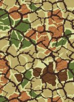camouflage - old, newer,next by rrossouw