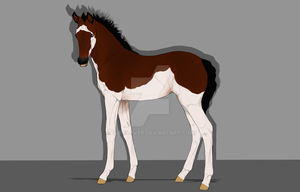 Thoroughbred foal IV - FOR SALE by EddieLover