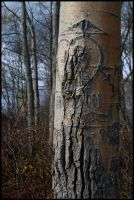 Ravages of TIme by raistlin306