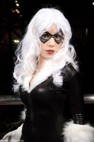 Black Cat by TheBigTog