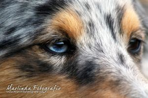 The blue eye by Marliinda