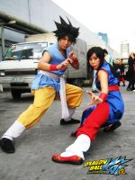 goku and chichi of dragonball by maiabest9381
