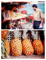 Pineapple salesman by byCavalera