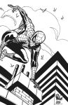 WIERINGO SPIDEY INKS by FanBoy67