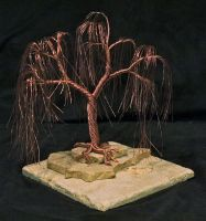 Weeping Willow for Ella by Arakhlin