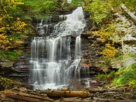 Ricketts Glen State Park 76 by Dracoart-Stock